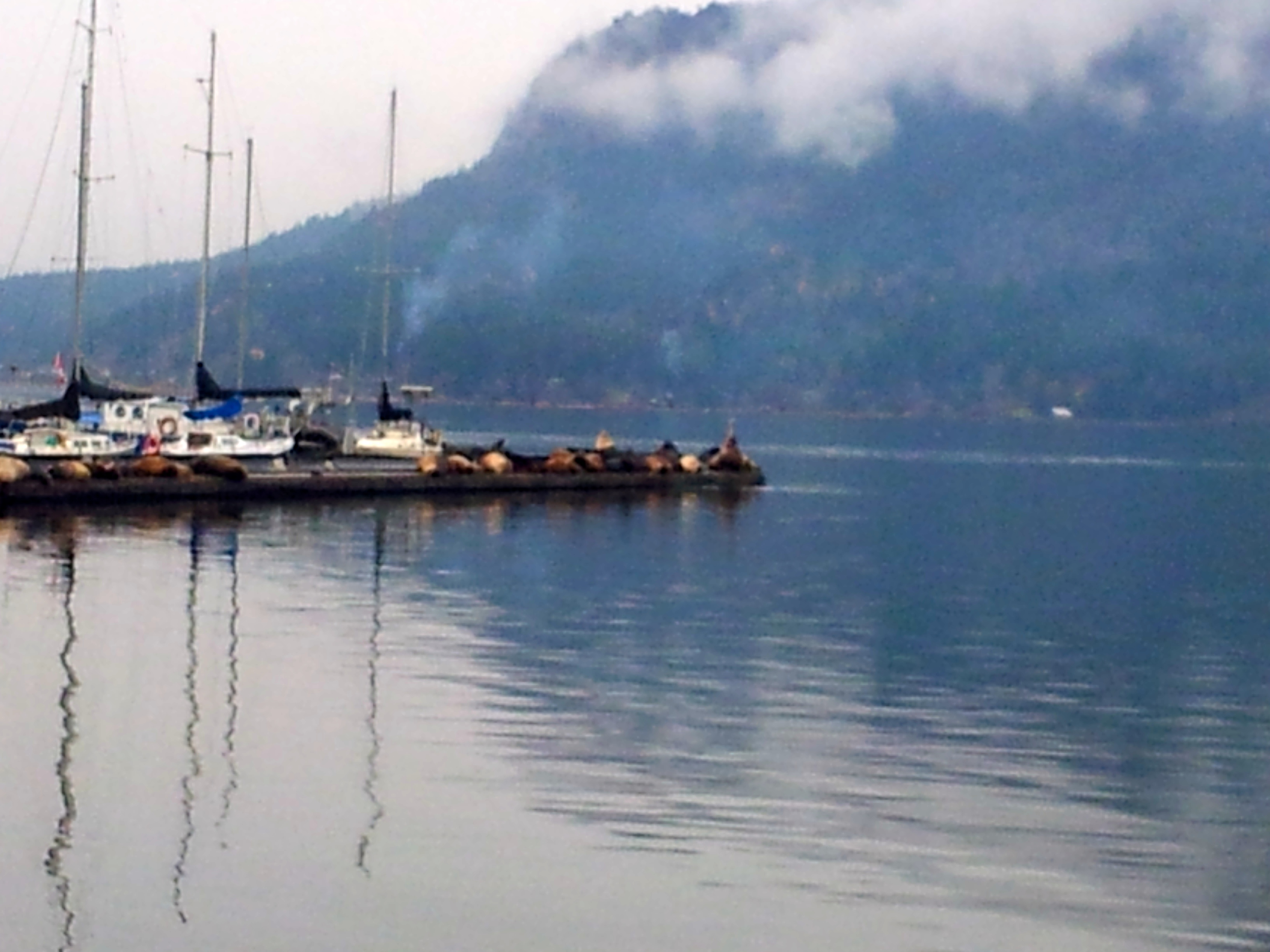 breakpoint-travel-guides-cowichan-bay-vancouver-island-cloudy-day-calm-water-teri-church