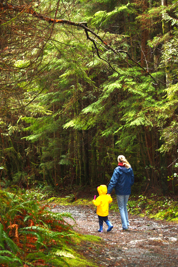 breakpoint-travel-guides-port-renfrew-botanical-beach-forest-trail-kathy-london