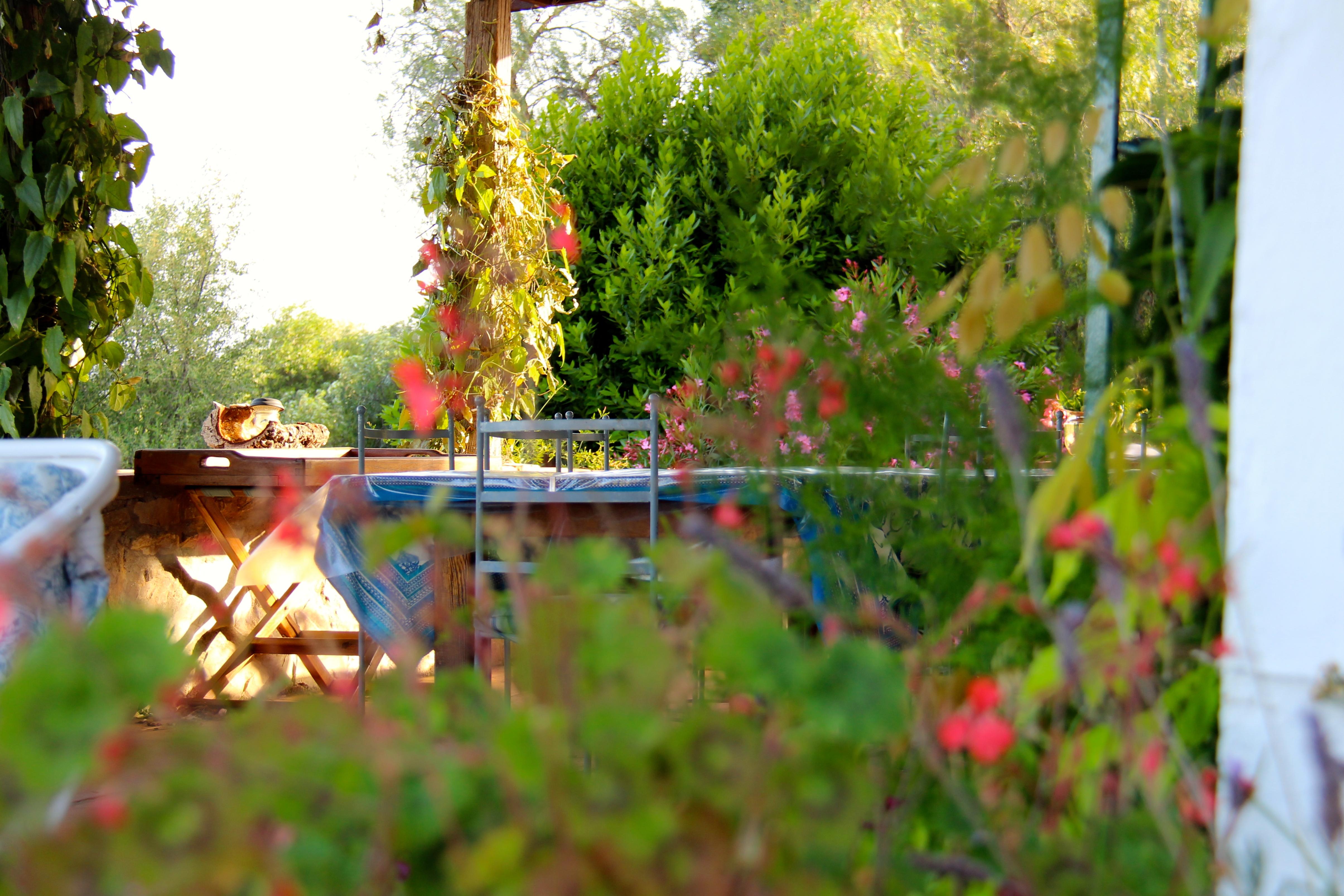 breakpointtravelguides-ugly-diplomat-san-pueblo-de-buceite-flowers-teri-church