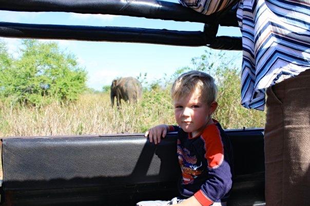 breakpointtravelguides-sri-lanka-udawalawe-elephant-safari-kathy-london