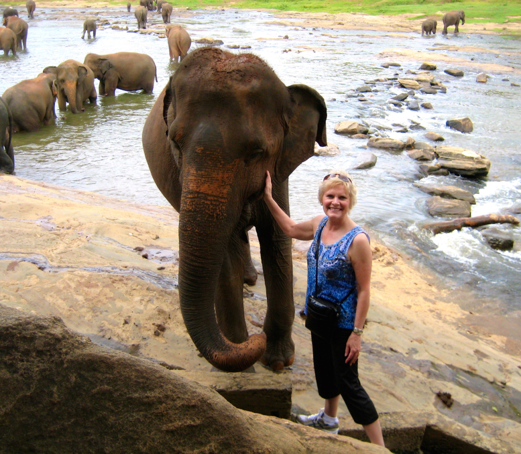 Patty and Elephant